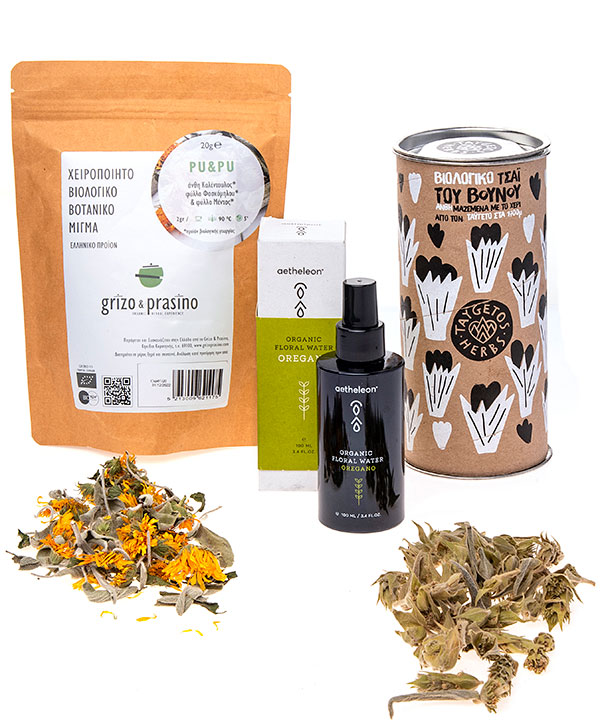 Plant Pharmacy at home